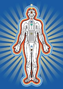Основные системы организма